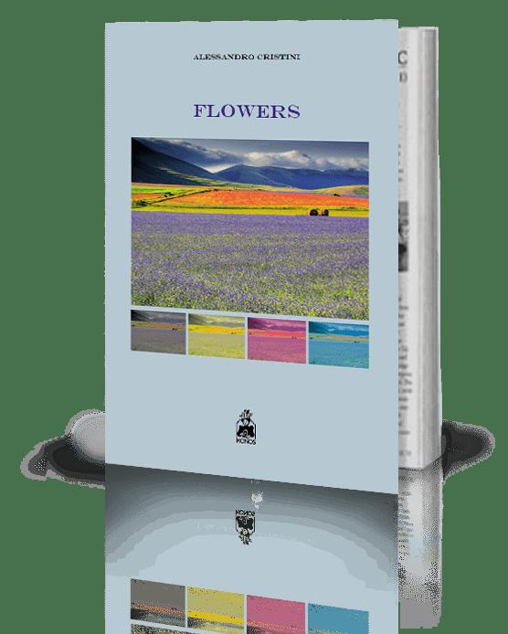 editoria libro pubblicazioni casa editrice